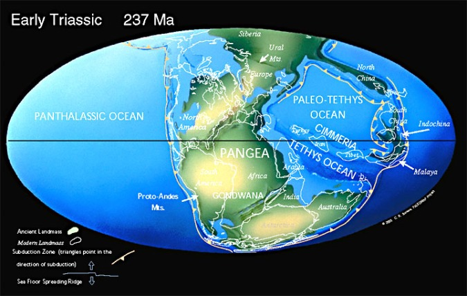 Pangea Plate tectonic maps and Continental drift animations by C. R. Scotese,  PALEOMAP Project (www.scotese.com)