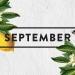 Goals update for September